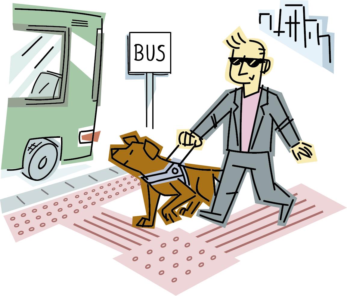 Dibujo de una persona ciega guiada por su perro guía se dirige a una parada de bus accesible mediante pavimento tactovisual.